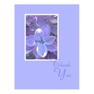 Lilacs Sympathy or Death Thank You Postcard