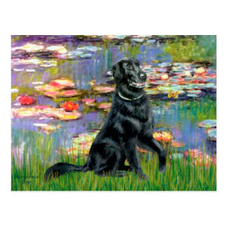 Lilies 2 - Flat Coated Retriever Post Cards