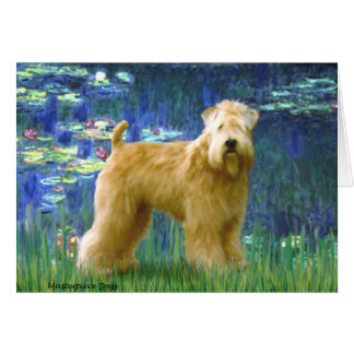 Lilies 5 - Wheaten Terrier (stand) Card