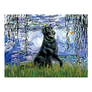 Lilies 6 - Flat Coated Retriever 2 Post Card