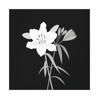 Lilies Illustration in Monochrome Canvas Print