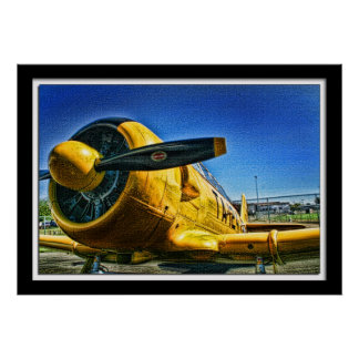 Lillian Photography HDR Yellow Airplane Poster