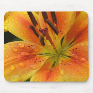 Lillies in the Rain Mouse Pad