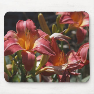 Lillies Mouse Pads