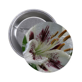 lilly 6 cm round badge