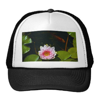 Lilly and Lotus Trucker Hats