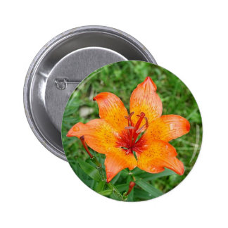 Lilly in Grass Button