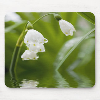 lilly of the valey mouse pads
