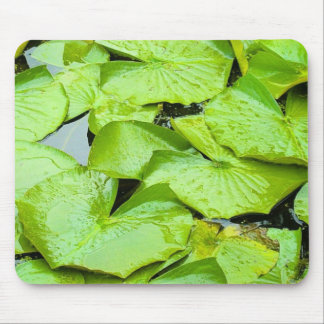 Lilly Pad Mouse Mat