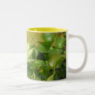 Lillypad Mugs