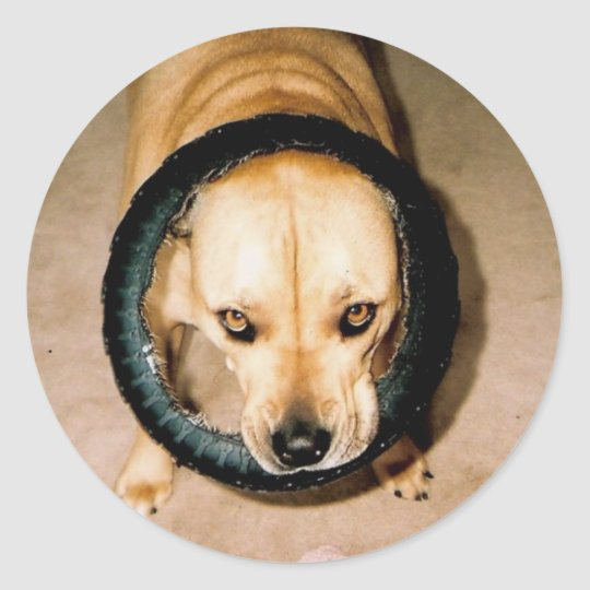 Lilo in Tire Classic Round Sticker