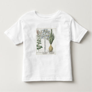 Lily: 1.Sultan Zambach Martagon Constantinopolitan Toddler T-Shirt