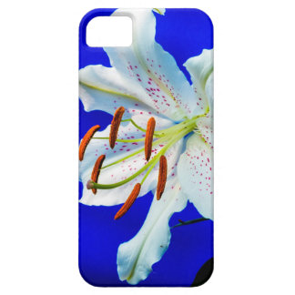 lily-227836  lily flower royal blue background nat iPhone 5 cover
