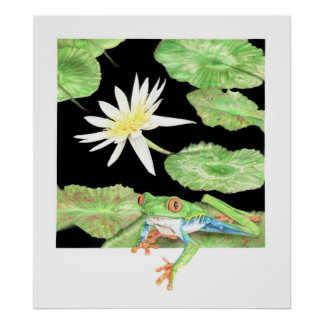 Lily and frog poster