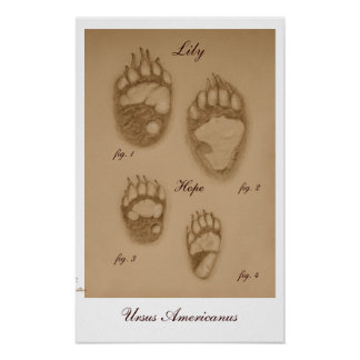 Lily and Hope Paw Print