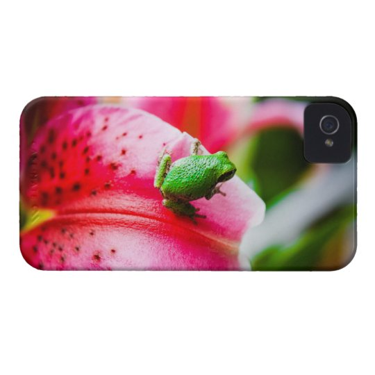 Lily and the Tree Frog iPhone 4 Covers