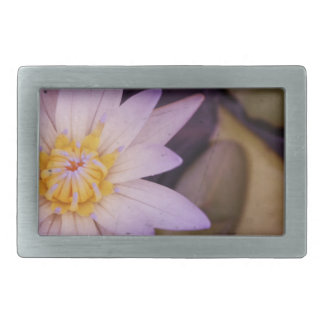 Lily Belt Buckles