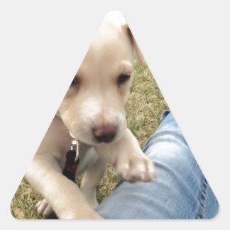 Lily Bit Triangle Sticker
