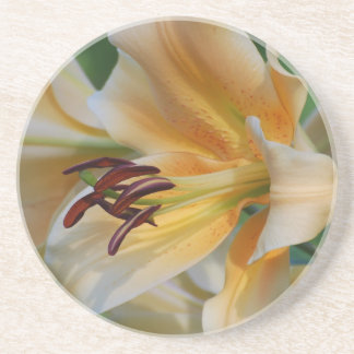 Lily Blossoms Coaster