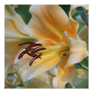 Lily Blossoms Invitations