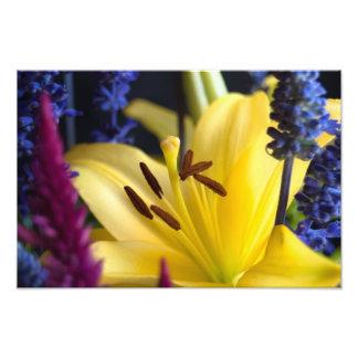 Lily Flower Arrangement Print Photographic Print