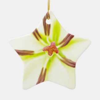 Lily flower close up christmas ornament