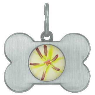 Lily flower close up pet ID tag