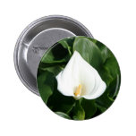 Lily growing at Calla Lily Plantation, Taiwan Pinback Buttons