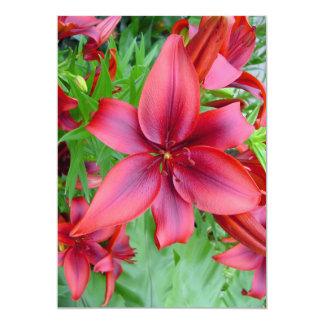 Lily - Iridescent Red (Luke 12:15) 13 Cm X 18 Cm Invitation Card
