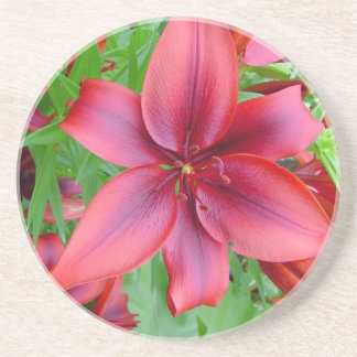 Lily - Iridescent Red (Luke 12:15) Beverage Coasters