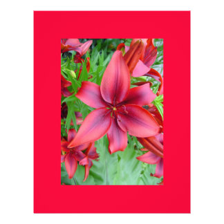 Lily - Iridescent Red (Luke 12:15) Flyer Design