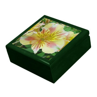 Lily Large Square Gift Box
