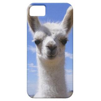 Lily Llama Cria iPhone 5 Case