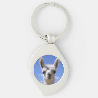 Lily Silver-Colored Swirl Key Ring