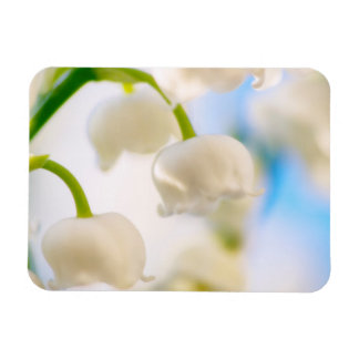 Lily of the Valley Flower Close-up Magnet