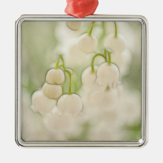 Lily of the Valley in Lavender Sketch Silver-Colored Square Decoration