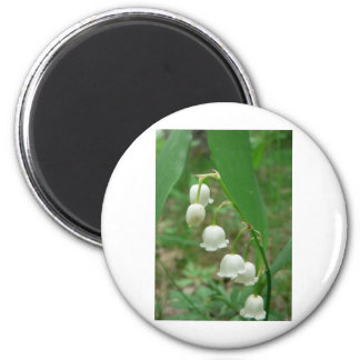 Lily-of-the-valley Refrigerator Magnets