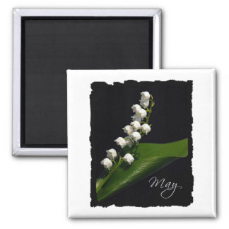 Lily of the Valley - May Square Magnet