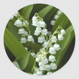 Lily Of  The Valley Round Sticker