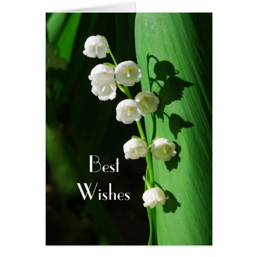Lily of the Valley Wedding Best Wishes Greeting Cards