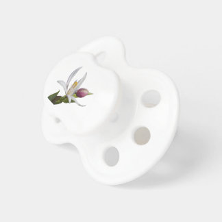 lily on white background baby pacifier