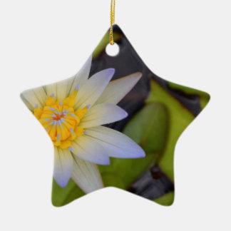 Lily pad christmas ornament