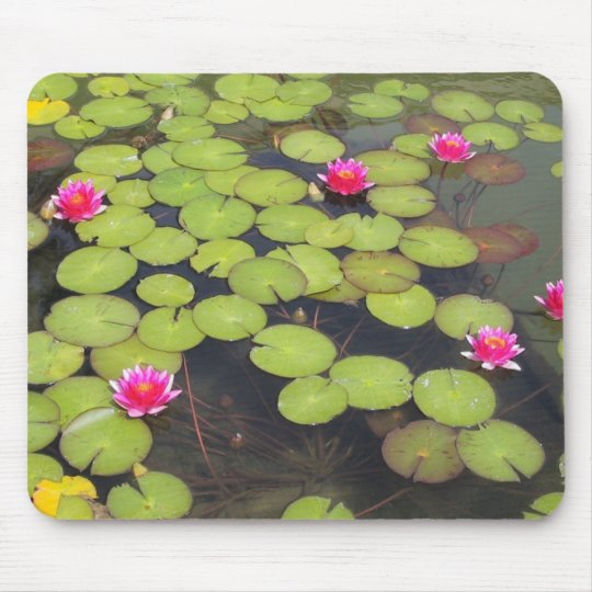 lily pad with pink flowers mouse mat
