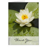 Lily Pads and White Lotus Flower Thank You Card