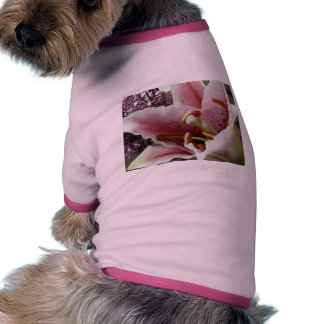 lily pink dog clothes