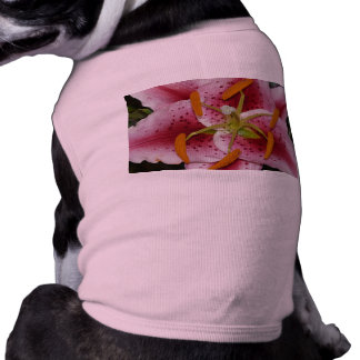 lily,pinky lily 2 doggie t-shirt