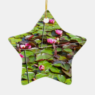 Lily pond times four ceramic star decoration