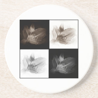 Lily Sepia and Black White Collage Coaster