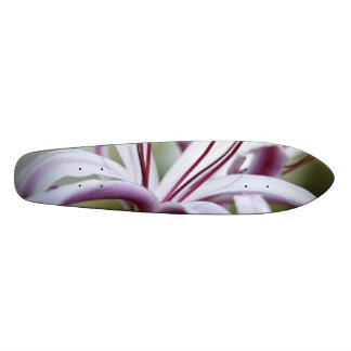 Lily Skateboard
