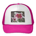 Lily White Purple House Plant Mesh Hat